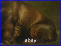Fine Large 1908 English Brown Cocker Spaniel Dog Portrait Antique Oil Painting