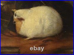 Large 19th Century English Boy Portrait & Guinea Pigs Stable Scene ROBERT JAMES